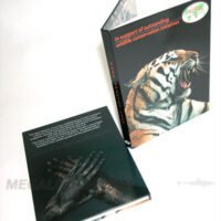 DVD Digibook