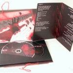 custom dvd book