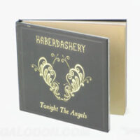 Special Effects printing Gold foil cd book