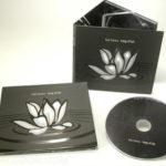 CD Digipak 6pp spot uv gloss matte lamination