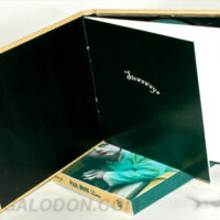 CD Book Inner Wrap and Booklet
